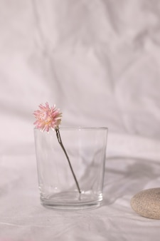 Vase de fleur sèche rose sur table avec tissu blanc