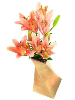 Vase de lys rose sur fond blanc. isolé sur blanc