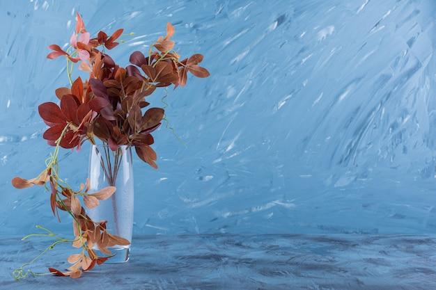 Un vase en verre avec des feuilles séchées sur fond bleu.