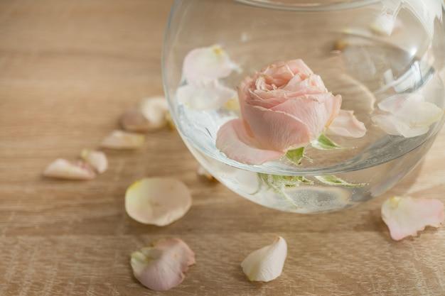 Vase en verre moderne avec des roses intérieur scandinave