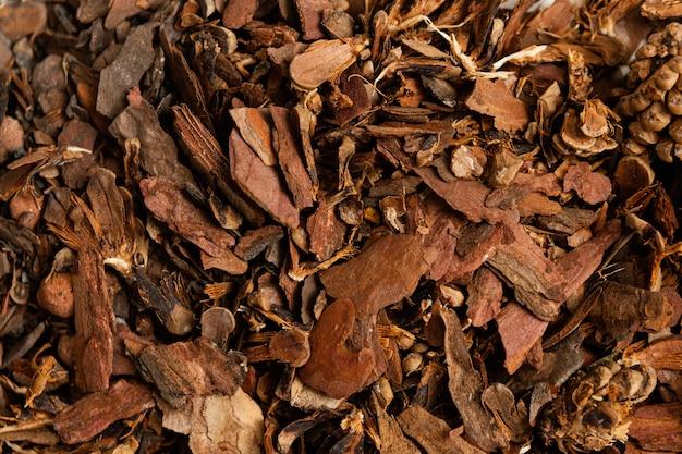 La Végétation Sèche Se Bouchent Photo gratuit