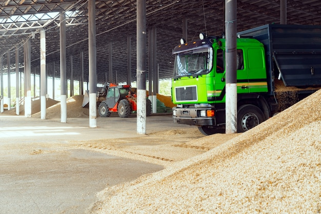 Véhicule agricole et gros tas de foin sec dans une ferme