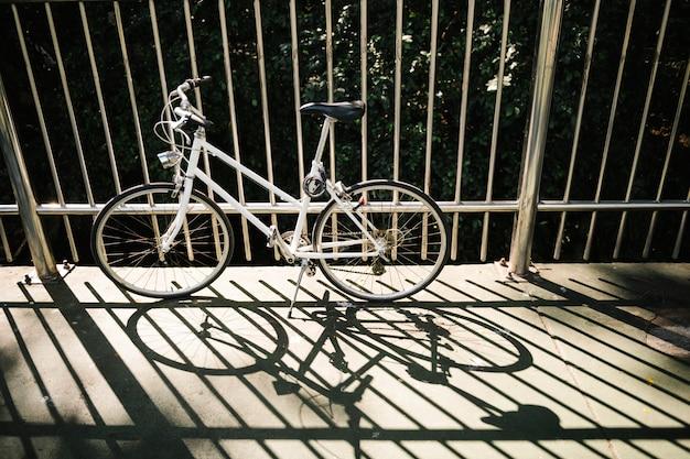 Vélo dans un sentier du parc