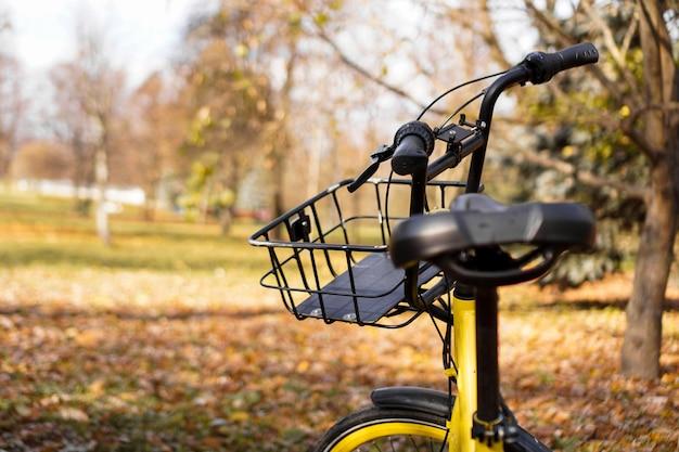 Vélo jaune avec des feuilles tombées au soleil couchant