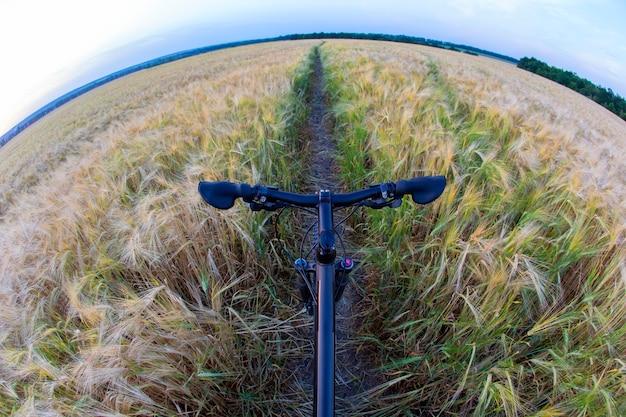 Vélo sur la piste du champ de blé. sports et voyages.