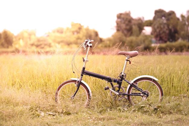 Vélo pliant dans le champ d'herbe