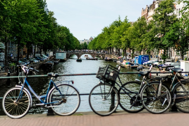 Vélos dans la rue. amsterdam.