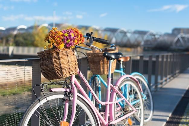 Vélos vintage roses et bleus avec des paniers de fleurs au bord de la rivière.