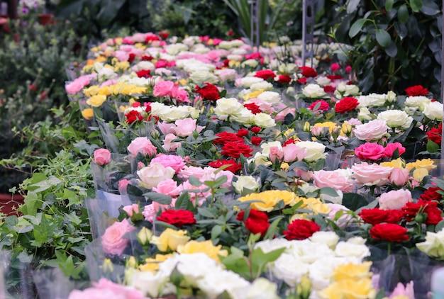 Vente de bouquets et de pots de fleurs de différentes couleurs dans un magasin de fleurs ou une jardinerie.