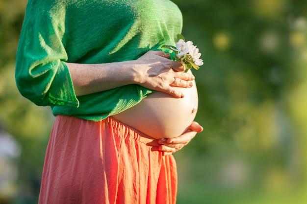 Ventre de femme enceinte avec fleur