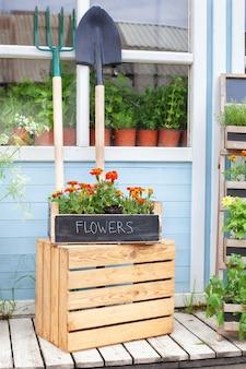 Véranda de décor d'été avec des fleurs de tagetes porche extérieur en bois de maison avec des plantes