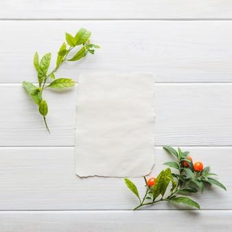 Verdure sur papier clair