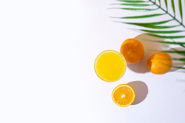 Verre avec du jus frais, des oranges et une feuille de palmier
