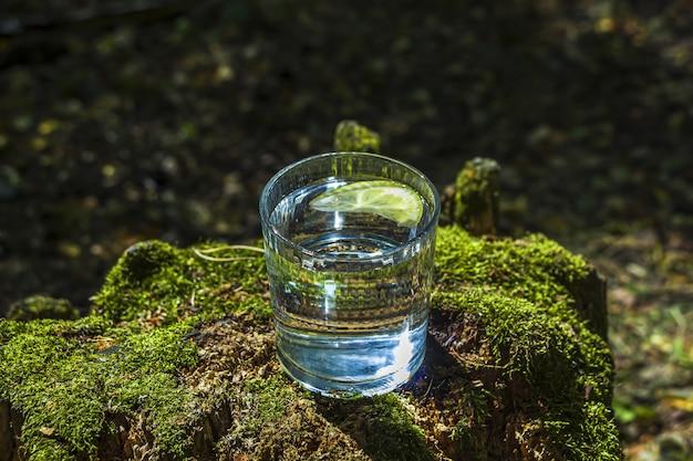 Verre d'eau douce propre sur une souche d'arbre avec de la mousse