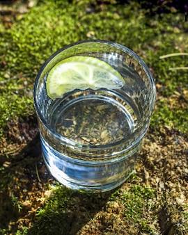 Verre d'eau propre avec du citron sur une souche d'arbre