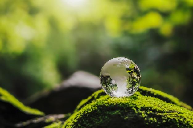 Verre de globe en cristal reposant sur la pierre de mousse avec le soleil dans la forêt de la nature. concept d'environnement écologique