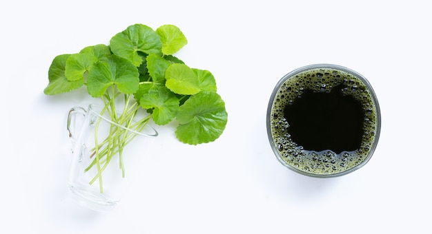 Verre de gotu kola laisse du jus pour la santé sur fond blanc. copie