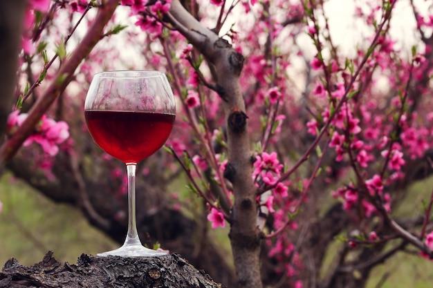 Verre à vin avec du vin rouge au jardin de pêchers