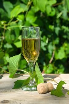Verre de vin sur le fond du vignoble