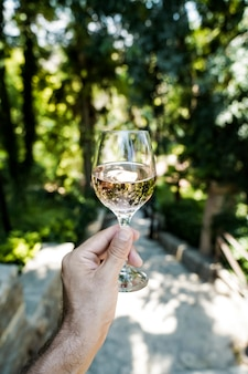 Verre de vin à la main dans le contexte des vignobles de la ferme d'été vin rouge fait maison de la somme...