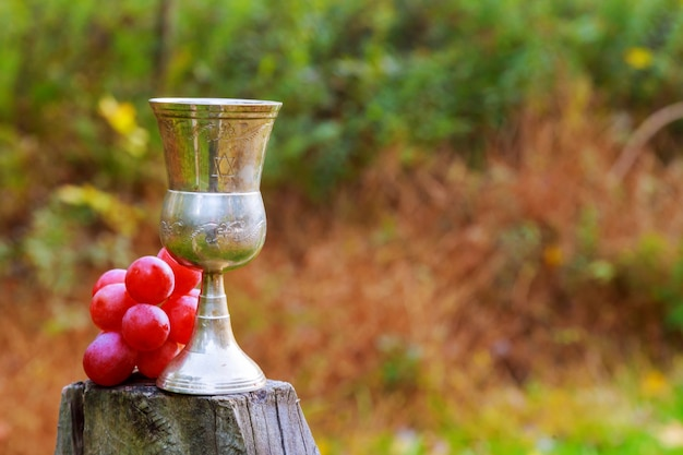 Verre de vin et de raisins pendant les fêtes juives jaunes