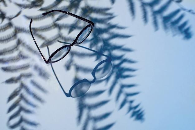 Verres avec des ombres de palmiers sur bleu