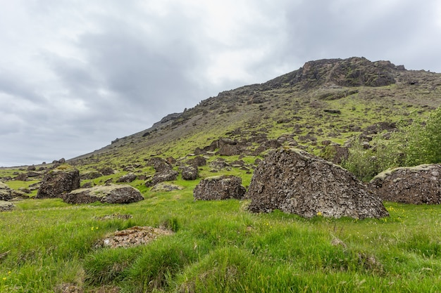 Versant de la montagne verte sur l'islande couverte d'herbe avec de gros rochers au premier plan.