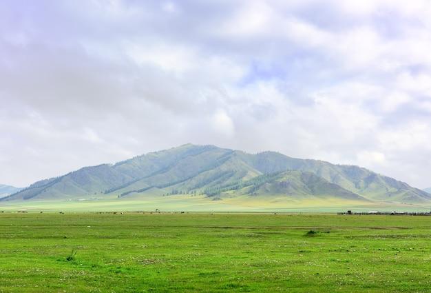 Un vert pâturage sur le fond d'une montagne sous un ciel bleu nuageux sibérie russie