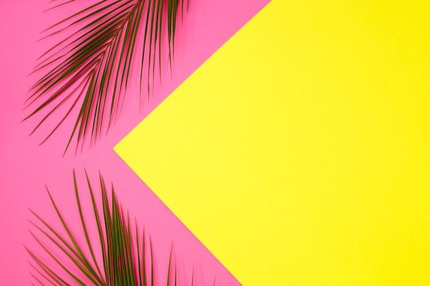 Vert tropical feuilles de palmier sur fond clair
