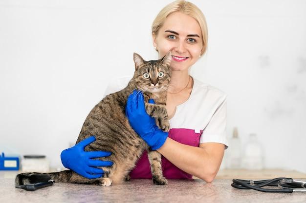 Le vétérinaire de la belle jeune fille embrasse et apaise un chat avant l'examen.