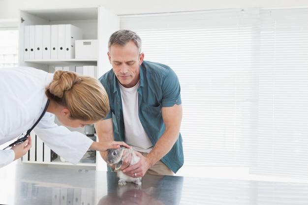 Vétérinaire donnant un bilan de santé à un lapin