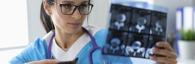 Le vétérinaire examine la radiographie à côté du chat. concept pour animaux de compagnie aux rayons x