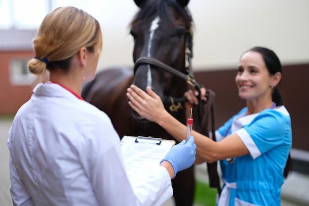Vétérinaire femelle tenant le tube à essai devant le cheval pur-sang