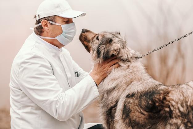 Vétérinaire senior caucasien contrôle chien en laisse. extérieur rural.