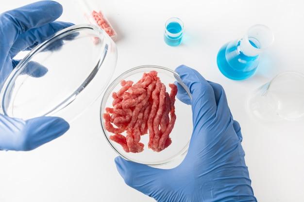Viande hachée artificielle dans une boîte de pétri dans les mains scientifique