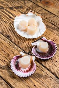 Viande de pétoncles de fruits de mer crus sur une coquille.