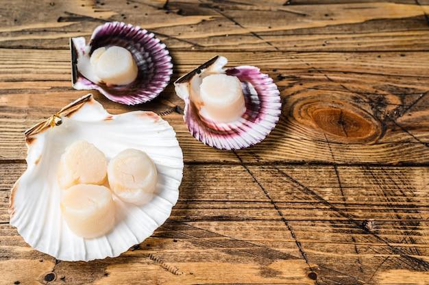 Viande de pétoncles de fruits de mer crus sur une coquille