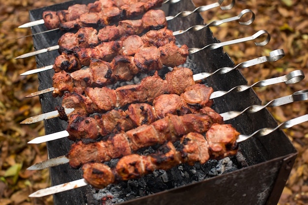 Viande rôtie sur feu brochettes de barbecue sur le gril