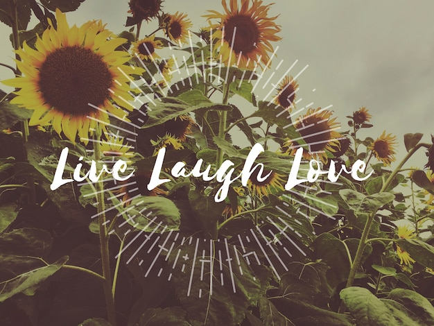 Vie vivre amour profiter de la positivité passion reconnaissante