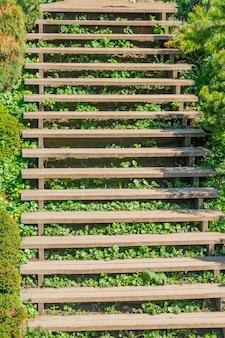 Vieil escalier en bois dans le parc