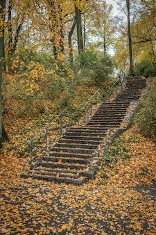 Le vieil escalier mène dans le parc en automne.
