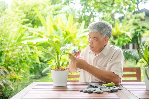 Un vieil homme âgé asiatique heureux et souriant plante pour un passe-temps après sa retraite dans une maison. concept d'un mode de vie heureux et d'une bonne santé pour les personnes âgées.