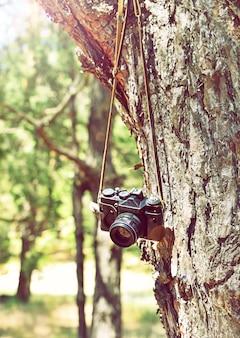 Vieille caméra argentique rétro suspendue à un arbre