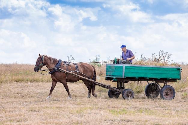 Une vieille charrette se précipite le long de la route
