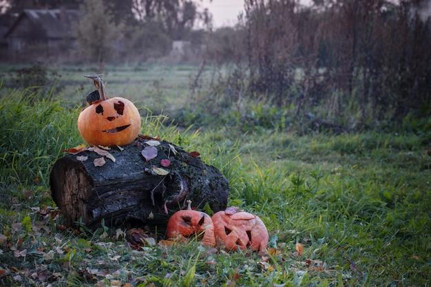 Vieille citrouille d'halloween gâtée en plein air