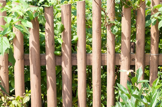 La vieille clôture en bois