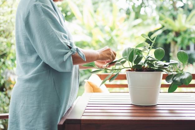 Une vieille femme âgée asiatique heureuse et souriante plante pour un passe-temps après sa retraite dans une maison.
