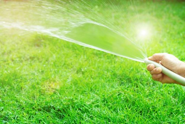 Vieille femme, main, tenue, caoutchouc, tuyau eau, pulvérisation, à, lumière soleil, et, vert, herbe