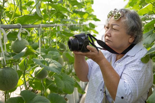 Vieille femme prenant une photo dans le jardinage. prolonger la retraite active d'une femme pour qu'elle fasse des activités