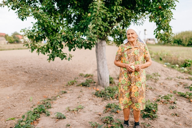 Vieille femme solitaire avec pomme verte dans les mains, debout dans le jardin devant le pommier.